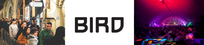 Beveiligingsloket-BIRD